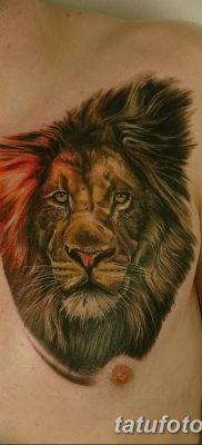 Фото тату голова льва от 08.08.2018 №153 – tattoo head of a lion – tatufoto.com