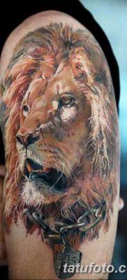 Фото тату голова льва от 08.08.2018 №183 – tattoo head of a lion – tatufoto.com