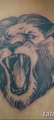 Фото тату голова льва от 08.08.2018 №188 – tattoo head of a lion – tatufoto.com