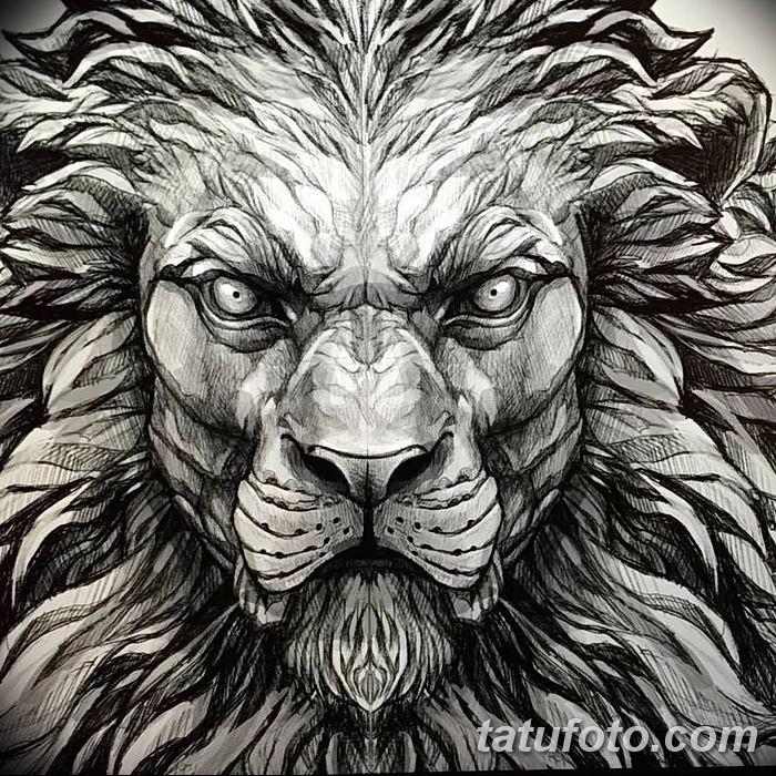 Фото тату голова льва от 08.08.2018 №189 - tattoo head of a lion - tatufoto.com