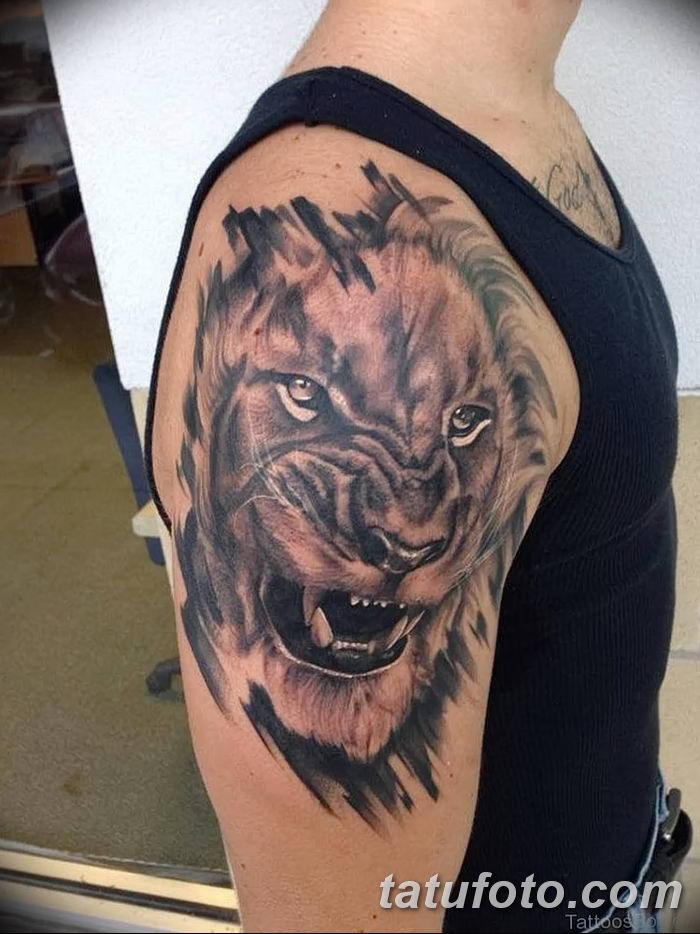 Фото тату голова льва от 08.08.2018 №192 - tattoo head of a lion - tatufoto.com