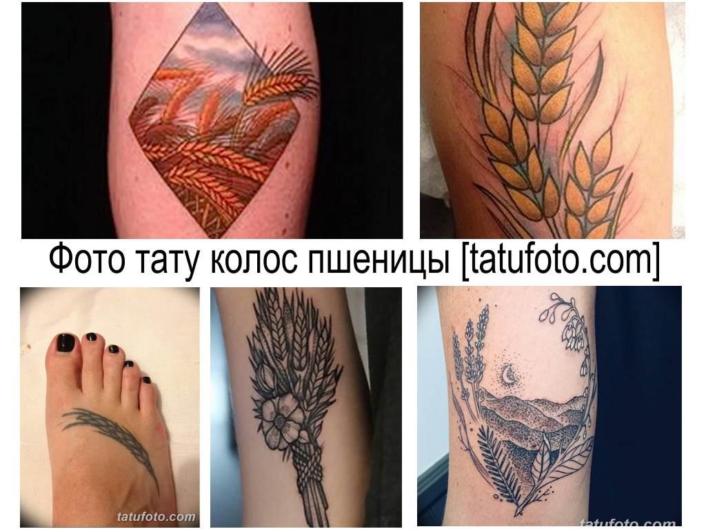 Фото тату колос пшеницы - оригинальная коллекция интересных готовых рисунков татуировки