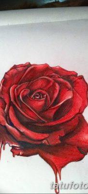 Фото тату красная роза от 08.08.2018 №114 – red rose tattoo – tatufoto.com