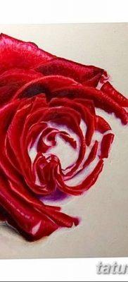 Фото тату красная роза от 08.08.2018 №116 – red rose tattoo – tatufoto.com