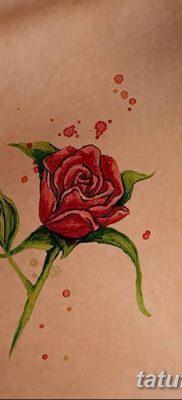 Фото тату красная роза от 08.08.2018 №140 – red rose tattoo – tatufoto.com