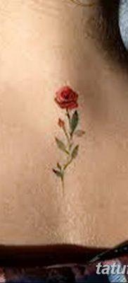 Фото тату красная роза от 08.08.2018 №145 – red rose tattoo – tatufoto.com