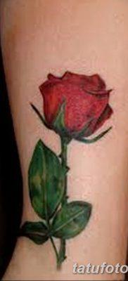Фото тату красная роза от 08.08.2018 №147 – red rose tattoo – tatufoto.com