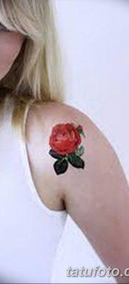 Фото тату красная роза от 08.08.2018 №160 – red rose tattoo – tatufoto.com