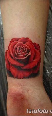 Фото тату красная роза от 08.08.2018 №169 – red rose tattoo – tatufoto.com