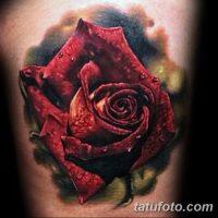 Значение тату «красная роза»