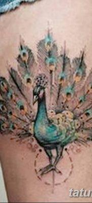 Фото тату птицы для девушек от 07.08.2018 №002 – bird tattoo for girls – tatufoto.com
