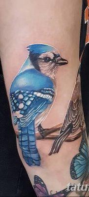 Фото тату птицы для девушек от 07.08.2018 №004 – bird tattoo for girls – tatufoto.com