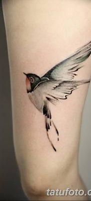 Фото тату птицы для девушек от 07.08.2018 №024 – bird tattoo for girls – tatufoto.com