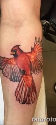 Фото тату птицы для девушек от 07.08.2018 №033 – bird tattoo for girls – tatufoto.com