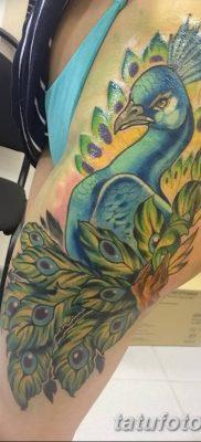 Фото тату птицы для девушек от 07.08.2018 №059 – bird tattoo for girls – tatufoto.com