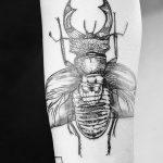 Фото черно-белые тату от 08.08.2018 №370 - black and white tattoos - tatufoto.com