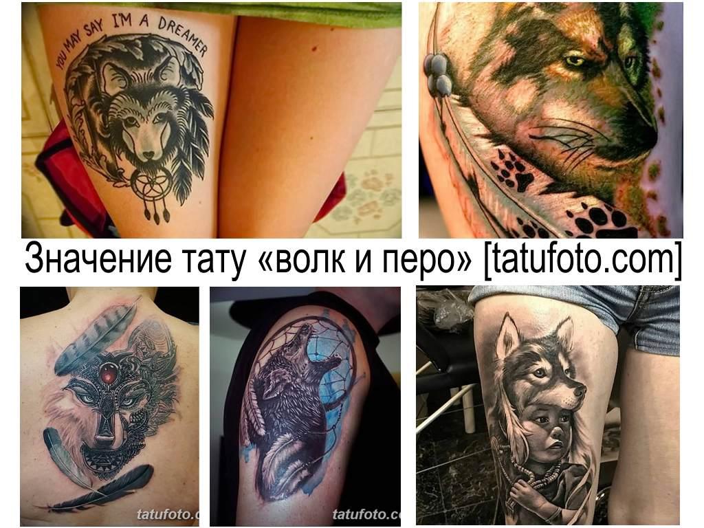 Значение тату волк с перьями - фото примеры интересных рисунков татуировки