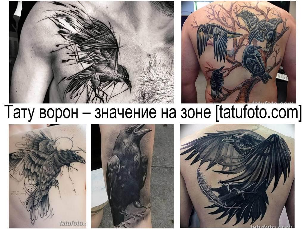Тату ворон – значение на зоне - фото примеры рисунков татуировки - коллекция