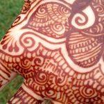 Фото Роспись мехенди (рисунки хной) от 11.09.2018 №020 - Painting mehendi - tatufoto.com