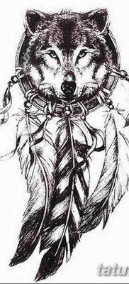 Фото тату волк и перо от 21.09.2018 №001 – tattoo wolf and feather – tatufoto.com