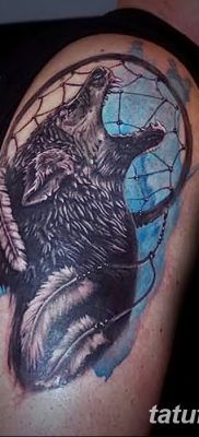 Фото тату волк и перо от 21.09.2018 №003 – tattoo wolf and feather – tatufoto.com