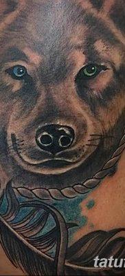 Фото тату волк и перо от 21.09.2018 №006 – tattoo wolf and feather – tatufoto.com