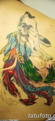 Фото тату волк и перо от 21.09.2018 №009 – tattoo wolf and feather – tatufoto.com