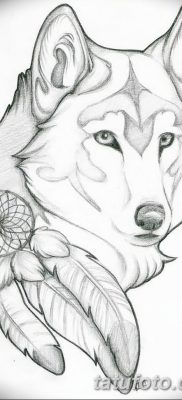 Фото тату волк и перо от 21.09.2018 №030 – tattoo wolf and feather – tatufoto.com