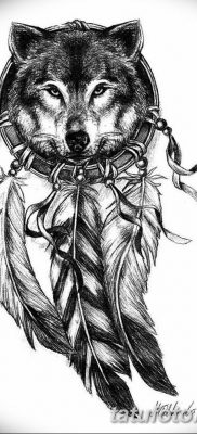 Фото тату волк и перо от 21.09.2018 №032 – tattoo wolf and feather – tatufoto.com