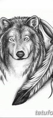 Фото тату волк и перо от 21.09.2018 №044 – tattoo wolf and feather – tatufoto.com