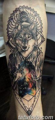Фото тату волк и перо от 21.09.2018 №049 – tattoo wolf and feather – tatufoto.com