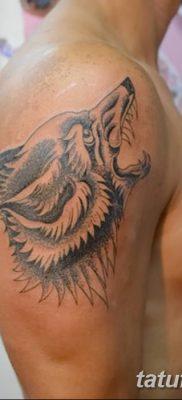 Фото тату волк и перо от 21.09.2018 №058 – tattoo wolf and feather – tatufoto.com