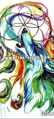 Фото тату волк и перо от 21.09.2018 №059 – tattoo wolf and feather – tatufoto.com