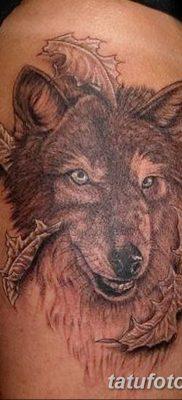 Фото тату волк и перо от 21.09.2018 №062 – tattoo wolf and feather – tatufoto.com