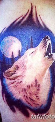 Фото тату волк и перо от 21.09.2018 №067 – tattoo wolf and feather – tatufoto.com