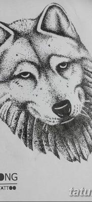 Фото тату волк и перо от 21.09.2018 №072 – tattoo wolf and feather – tatufoto.com