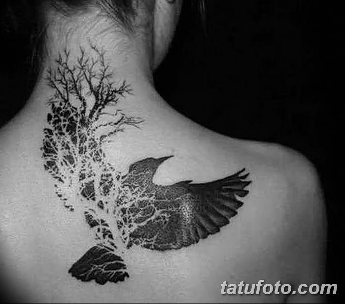 Фото тату ворон от 15.09.2018 №029 - raven tattoos - tatufoto.com