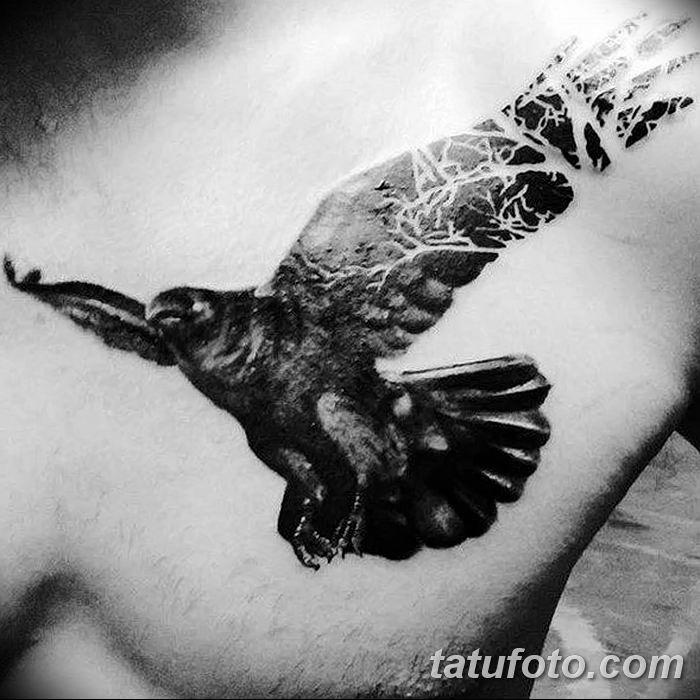 Фото тату ворон от 15.09.2018 №035 - raven tattoos - tatufoto.com
