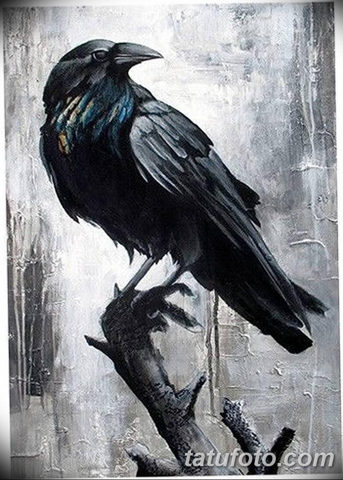 Фото тату ворон от 15.09.2018 №046 - raven tattoos - tatufoto.com
