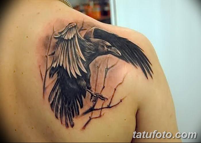 Фото тату ворон от 15.09.2018 №071 - raven tattoos - tatufoto.com