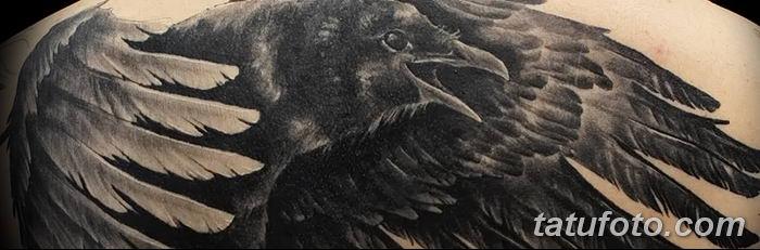 Фото тату ворон от 15.09.2018 №073 - raven tattoos - tatufoto.com