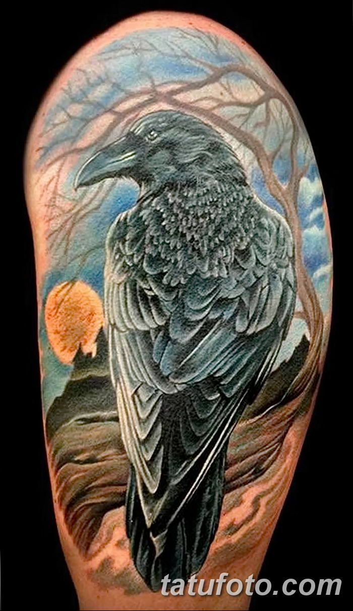 Фото тату ворон от 15.09.2018 №079 - raven tattoos - tatufoto.com