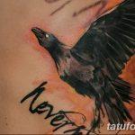 Фото тату ворон от 15.09.2018 №139 - raven tattoos - tatufoto.com
