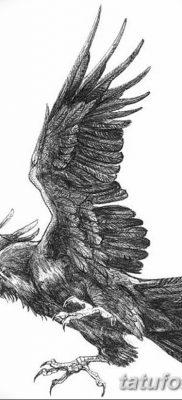 Фото тату ворон от 15.09.2018 №145 – raven tattoos – tatufoto.com