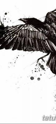 Фото тату ворон от 15.09.2018 №165 – raven tattoos – tatufoto.com