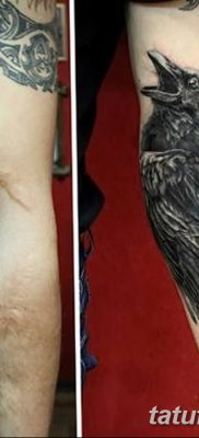 Фото тату ворон от 15.09.2018 №197 – raven tattoos – tatufoto.com