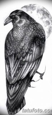 Фото тату ворон от 15.09.2018 №204 – raven tattoos – tatufoto.com