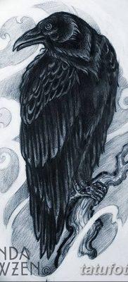 Фото тату ворон от 15.09.2018 №207 – raven tattoos – tatufoto.com