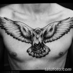 Фото тату ворон от 15.09.2018 №214 - raven tattoos - tatufoto.com