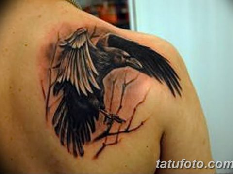 Фото тату ворон от 15.09.2018 №267 - raven tattoos - tatufoto.com